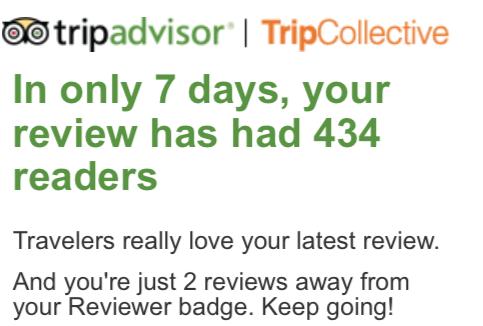 tripadvisor social pressure example